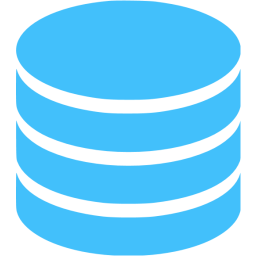 Data Storage logo
